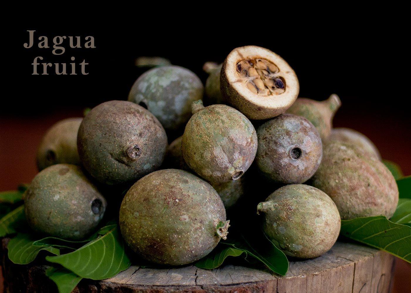 jagua fruit.jpg
