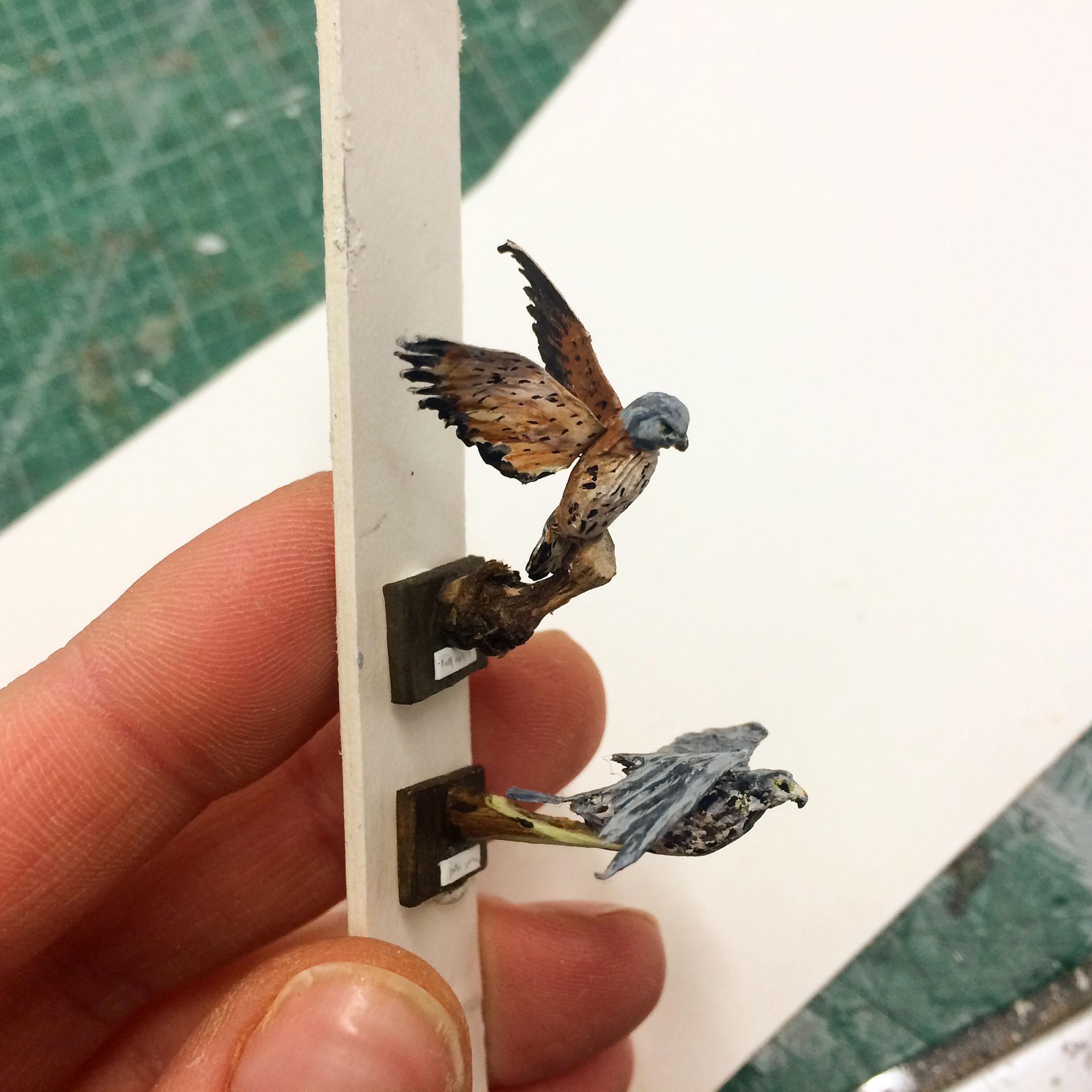 walkurie-birds-scalemodel-2.jpg