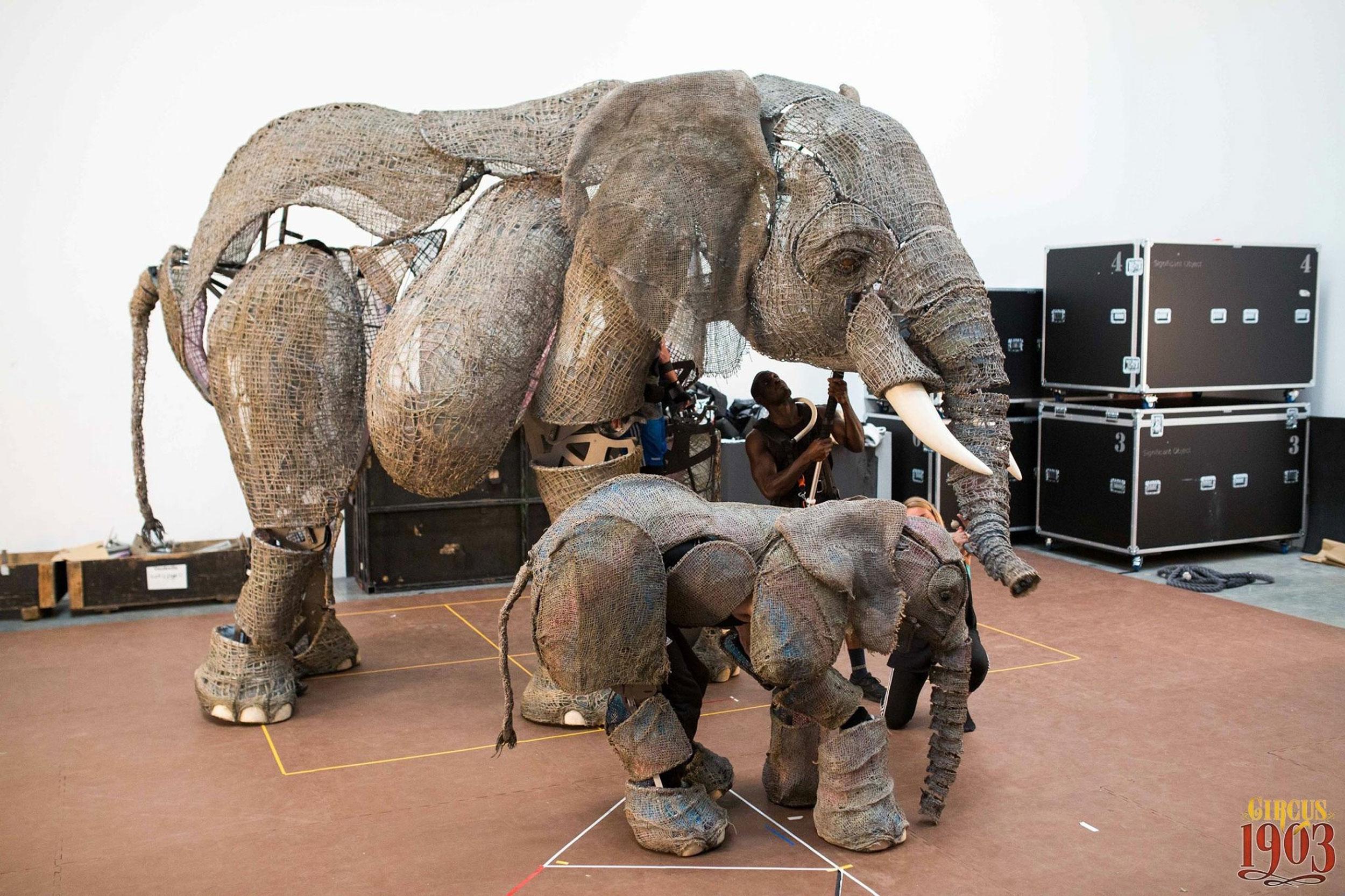 elephants-rehearsal-circus1903.jpg