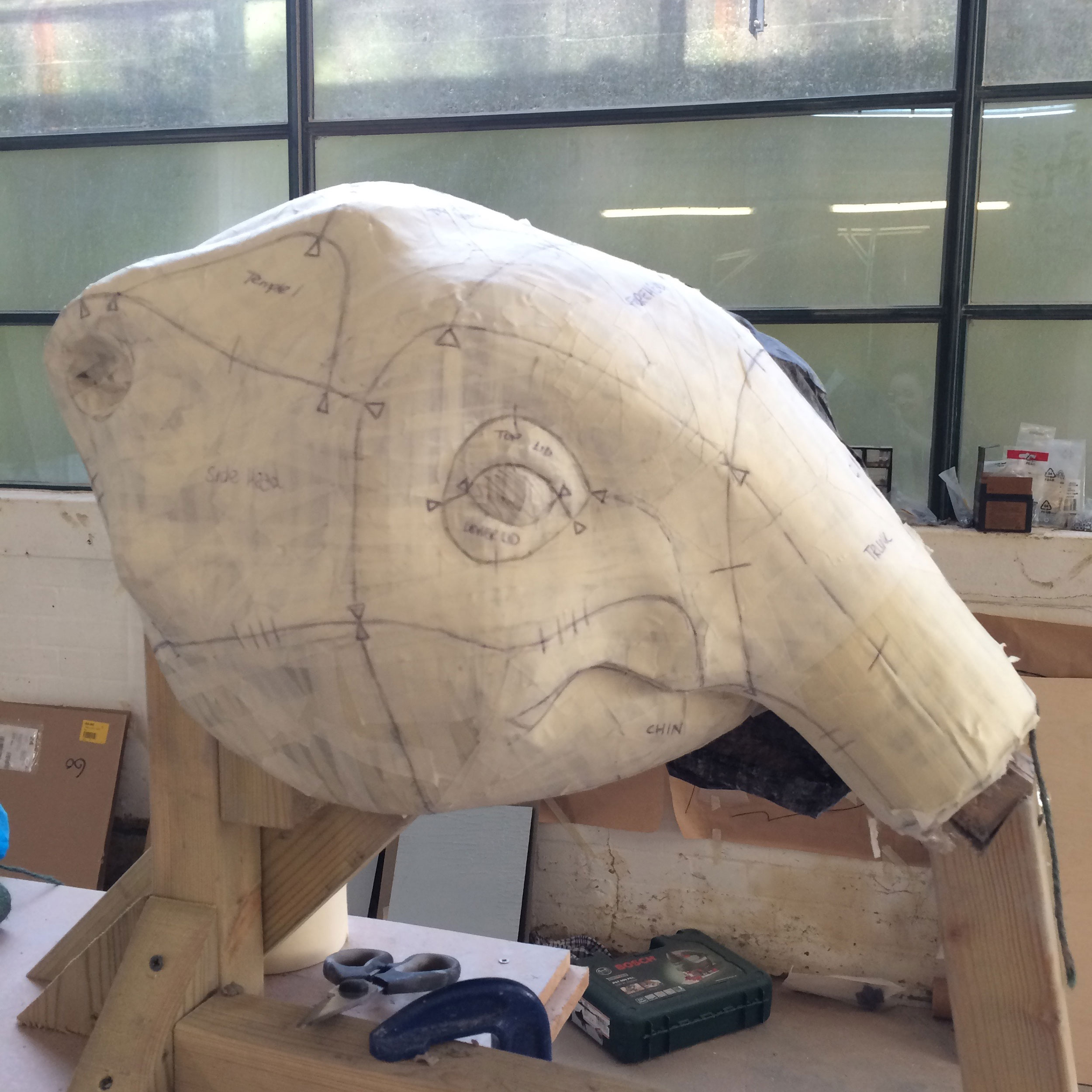 baby-elephant-head-process.jpg