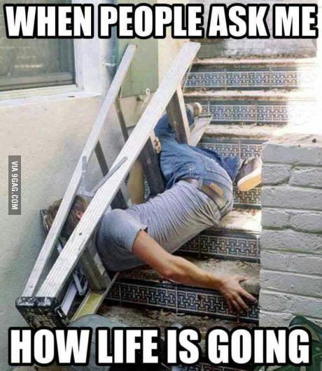 Life-Meme.jpg