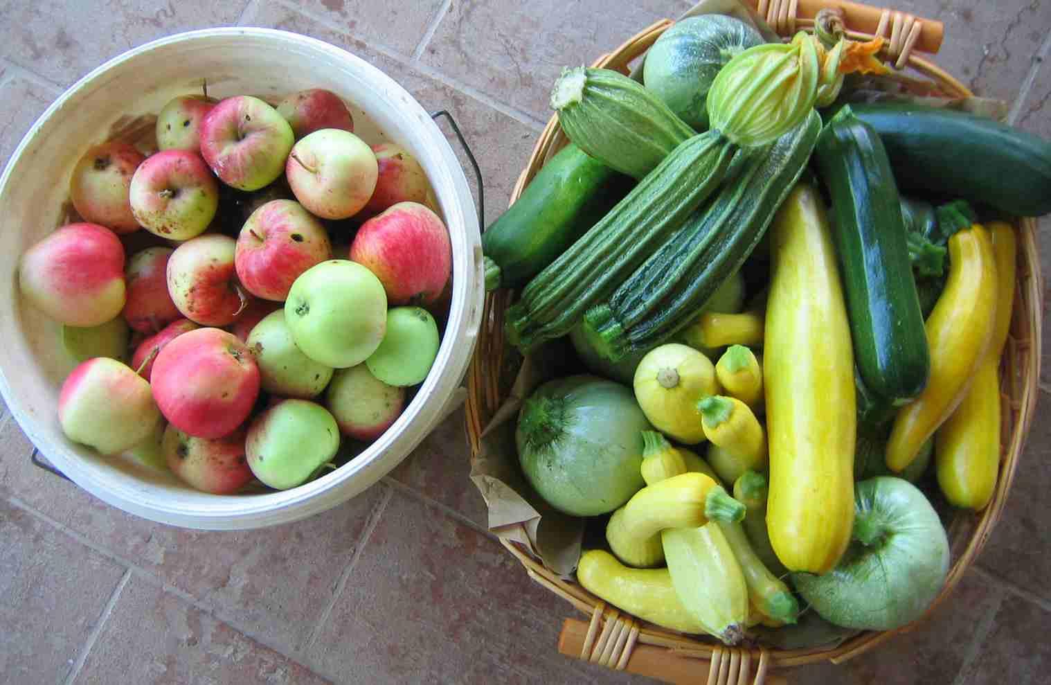 afternoonharvest.JPG
