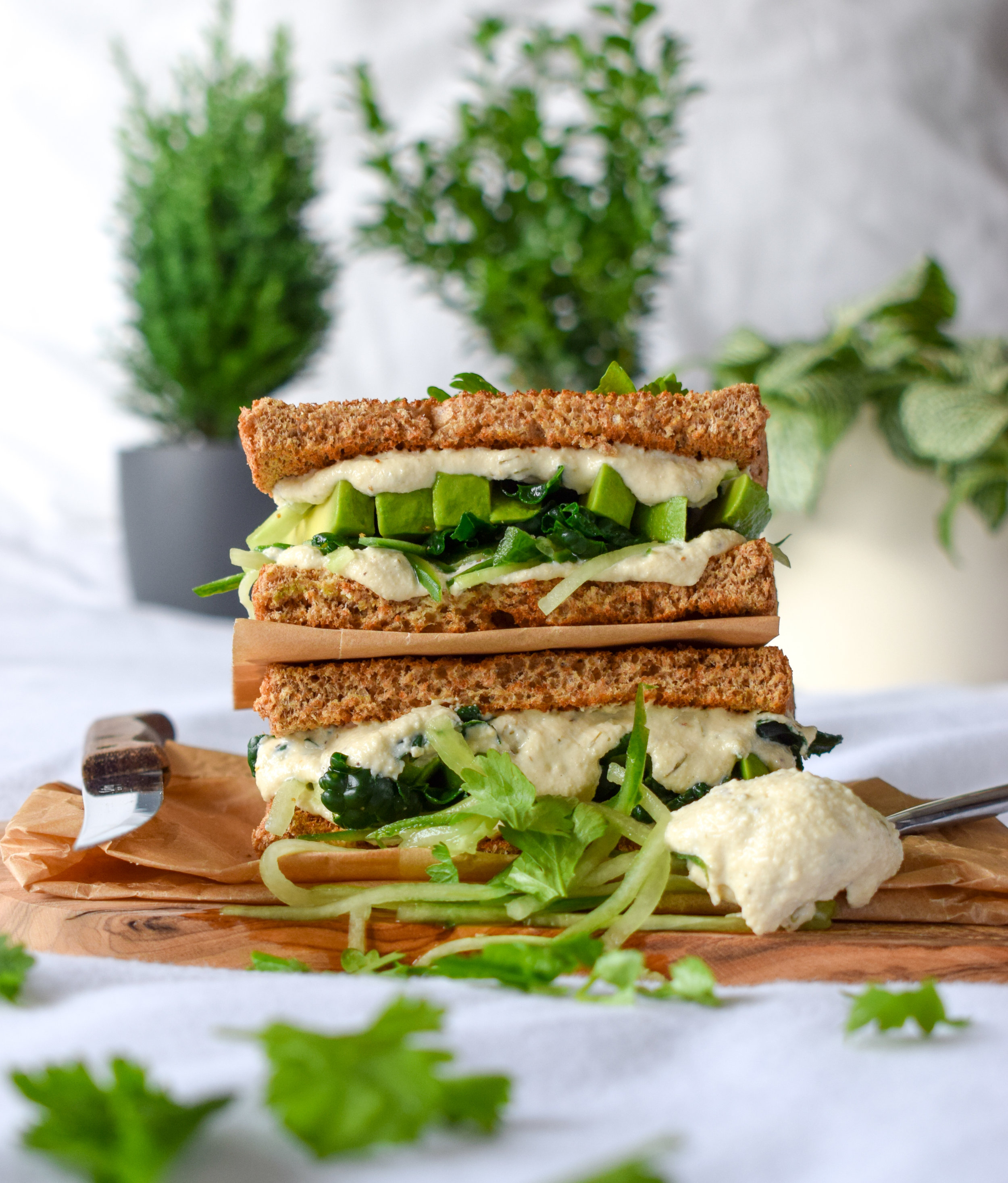 Loaded Vegan Cream Cheese Toasted Sandwich with Cucumber, Kale and Avocado - Ally The Earthling