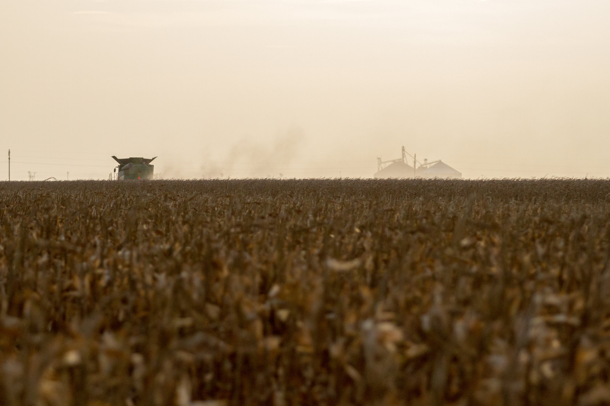 whatley farms combine and coop.jpg