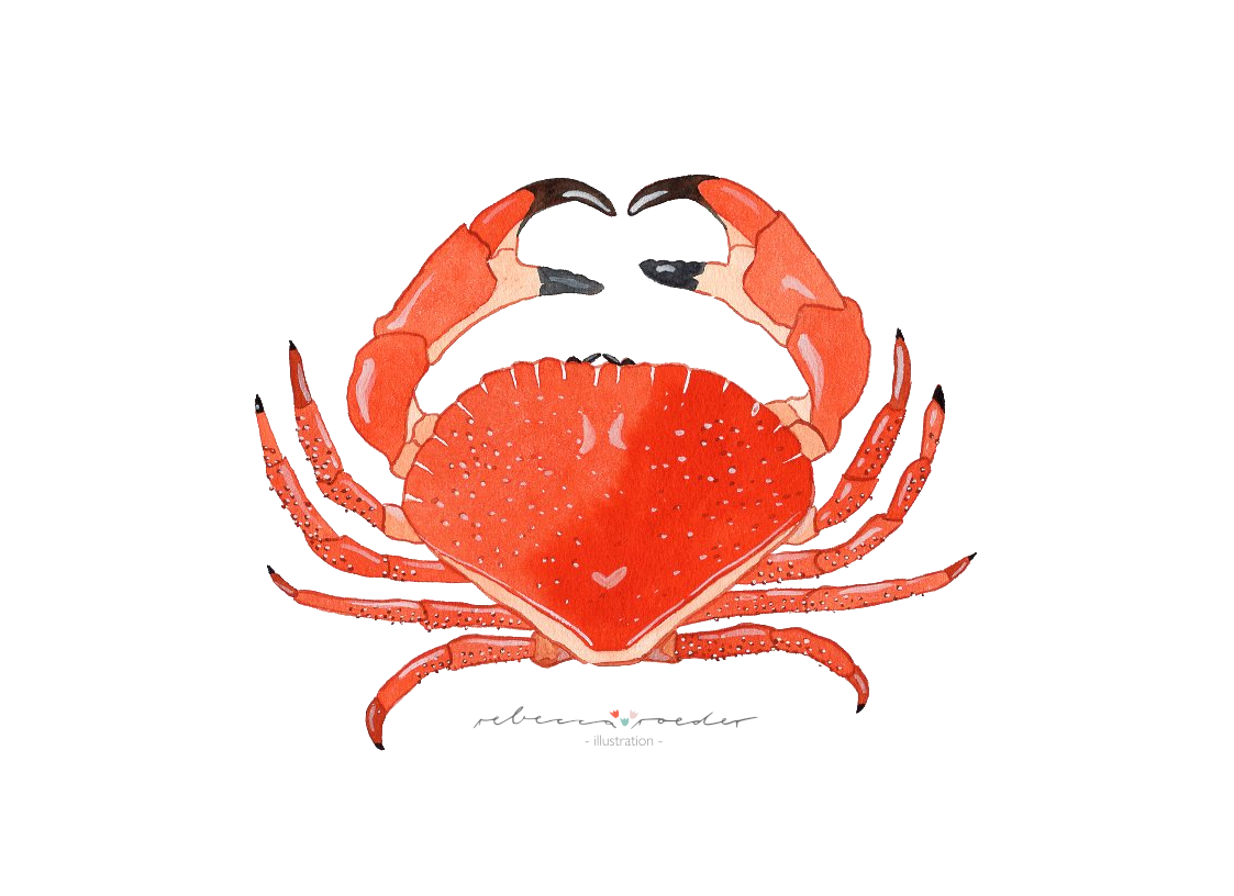 Krabbe.png