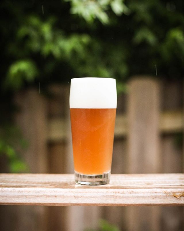 My latest beer, a classic double IPA. You can read the nerdy details at @humblejudebrewing. This one is a keeper. #zymurgy #homebrew