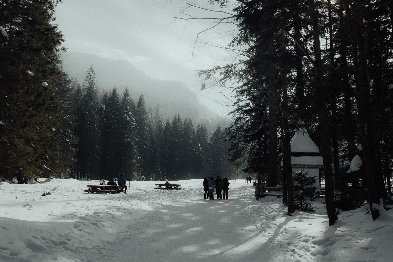 Destination-Wedding-Photographer-couple-in-mountains-1-13.jpg