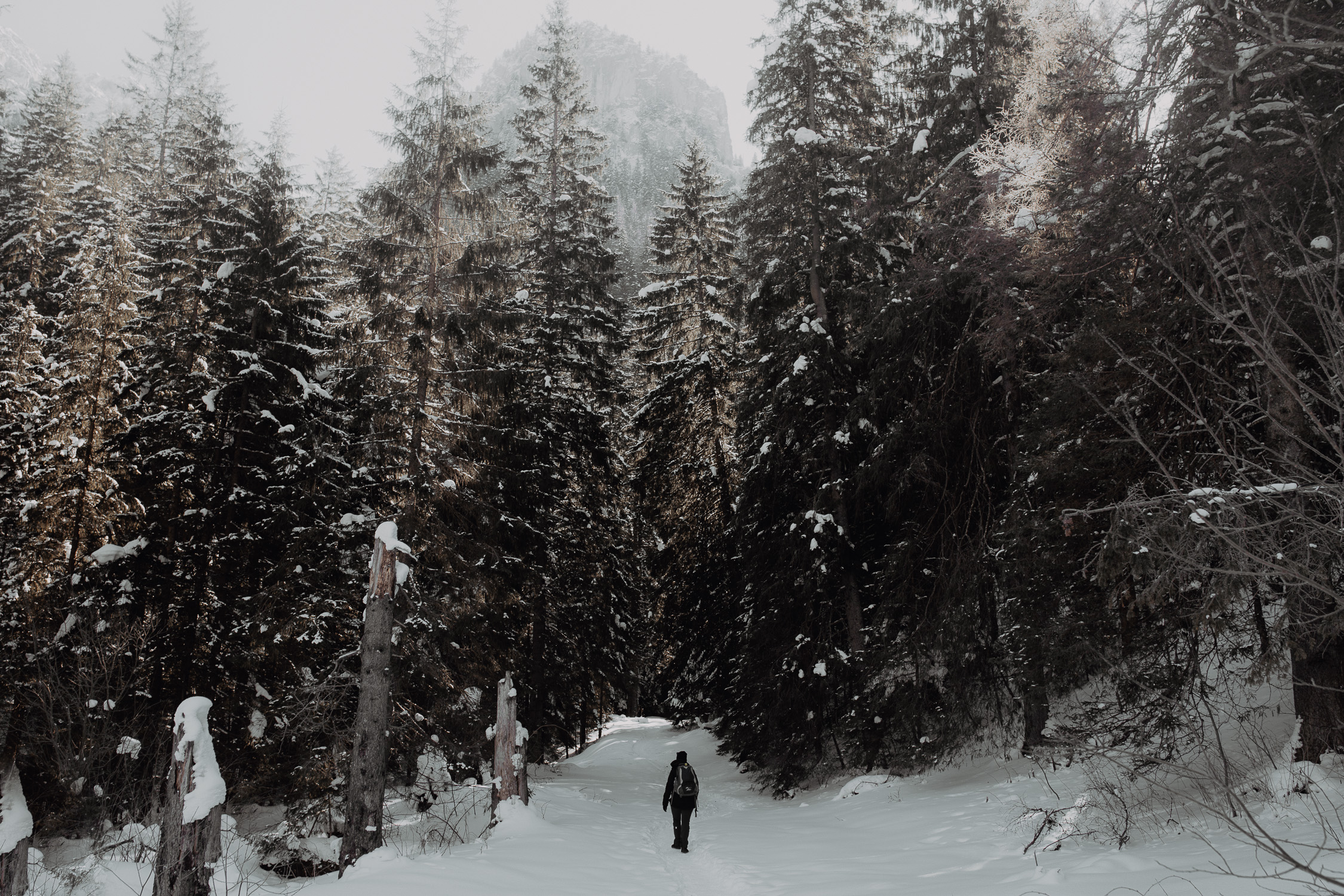 Destination-Wedding-Photographer-couple-in-mountains-1-52.jpg