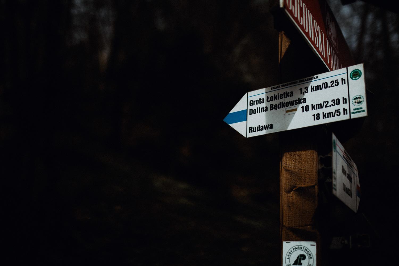 Sesja-narzeczenska-w-ojcowskim-parku-narodowym-11.jpg