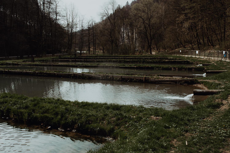 Sesja-narzeczenska-w-ojcowskim-parku-narodowym-6.jpg
