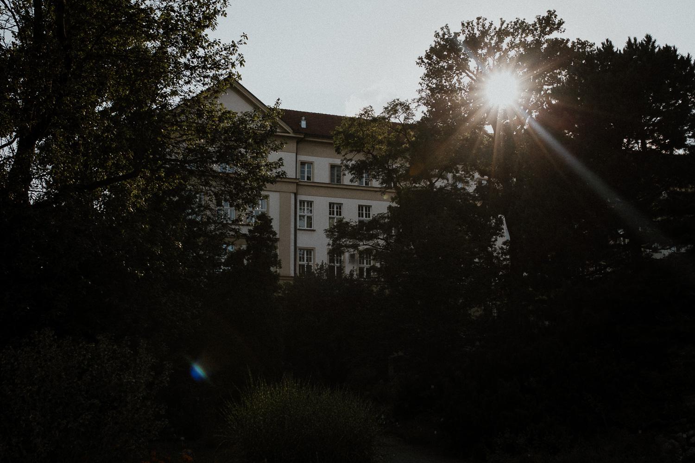 sesja-narzeczenska-w-ogrodzie-botanicznym-w-krakowie-1.jpg