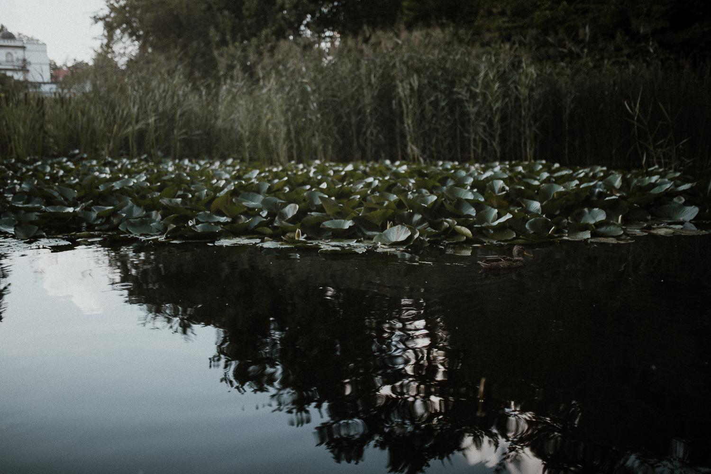 sesja-narzeczenska-w-ogrodzie-botanicznym-w-krakowie-2.jpg