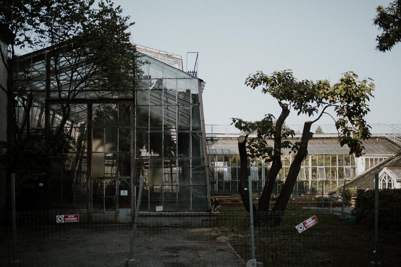 sesja-narzeczenska-w-ogrodzie-botanicznym-w-krakowie-3.jpg