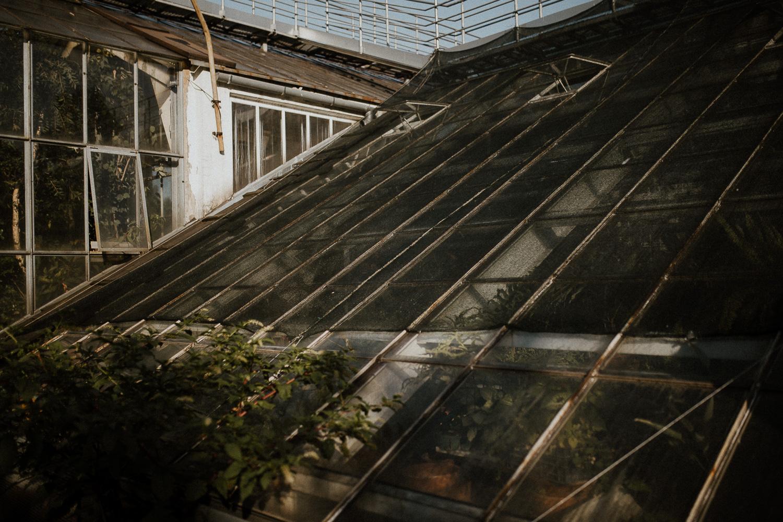 sesja-narzeczenska-w-ogrodzie-botanicznym-w-krakowie-5.jpg
