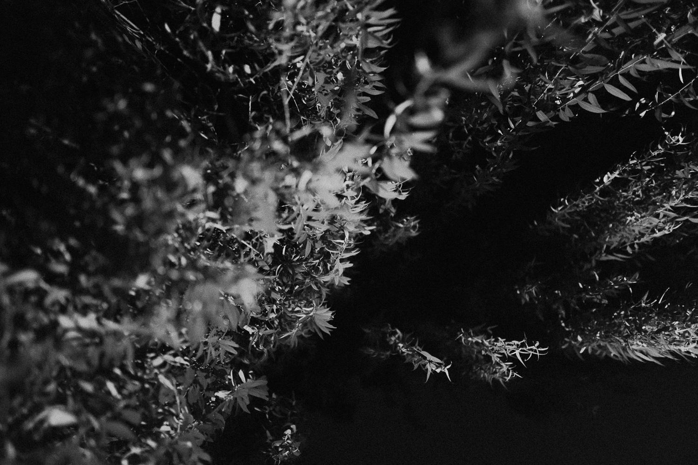 czarno biala fotografia analogowa  (6 of 18).jpg