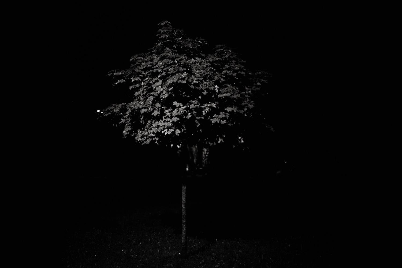 czarno biala fotografia analogowa  (8 of 18).jpg