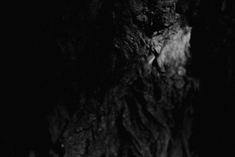 czarno biala fotografia analogowa  (7 of 18).jpg