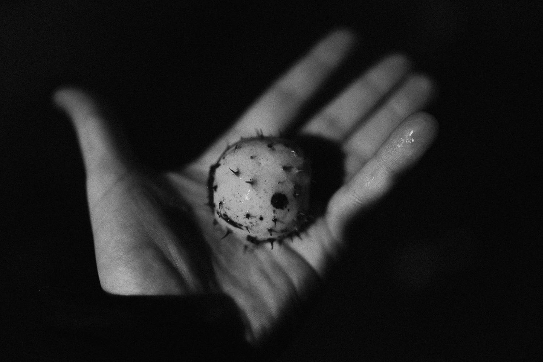 czarno biala fotografia analogowa  (9 of 18).jpg