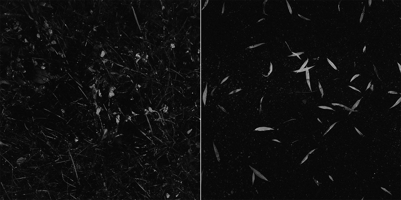 czarno biala fotografia analogowa 2.jpg