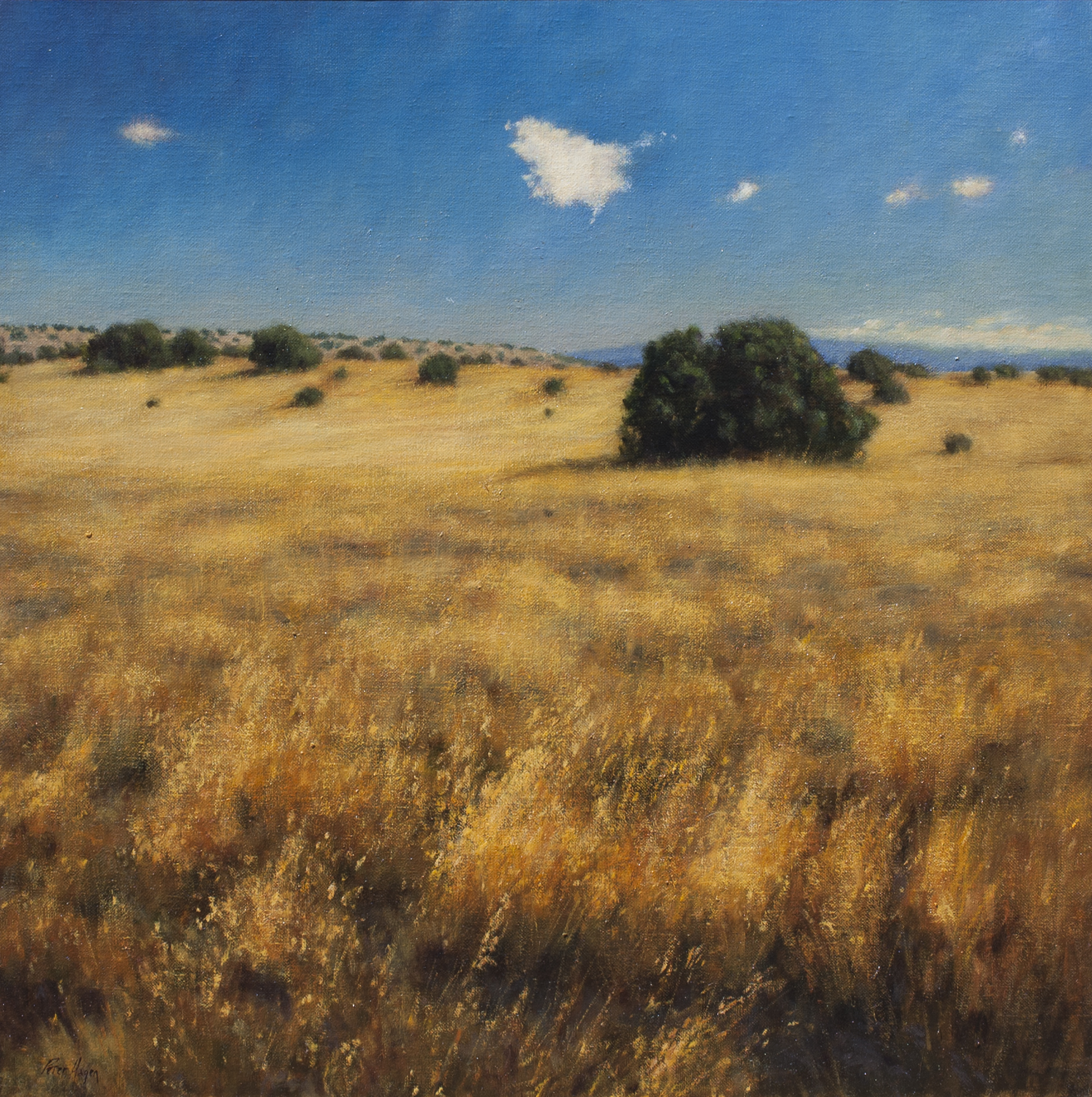 "Tamed Silence • 30"" x 30"" • Oil"