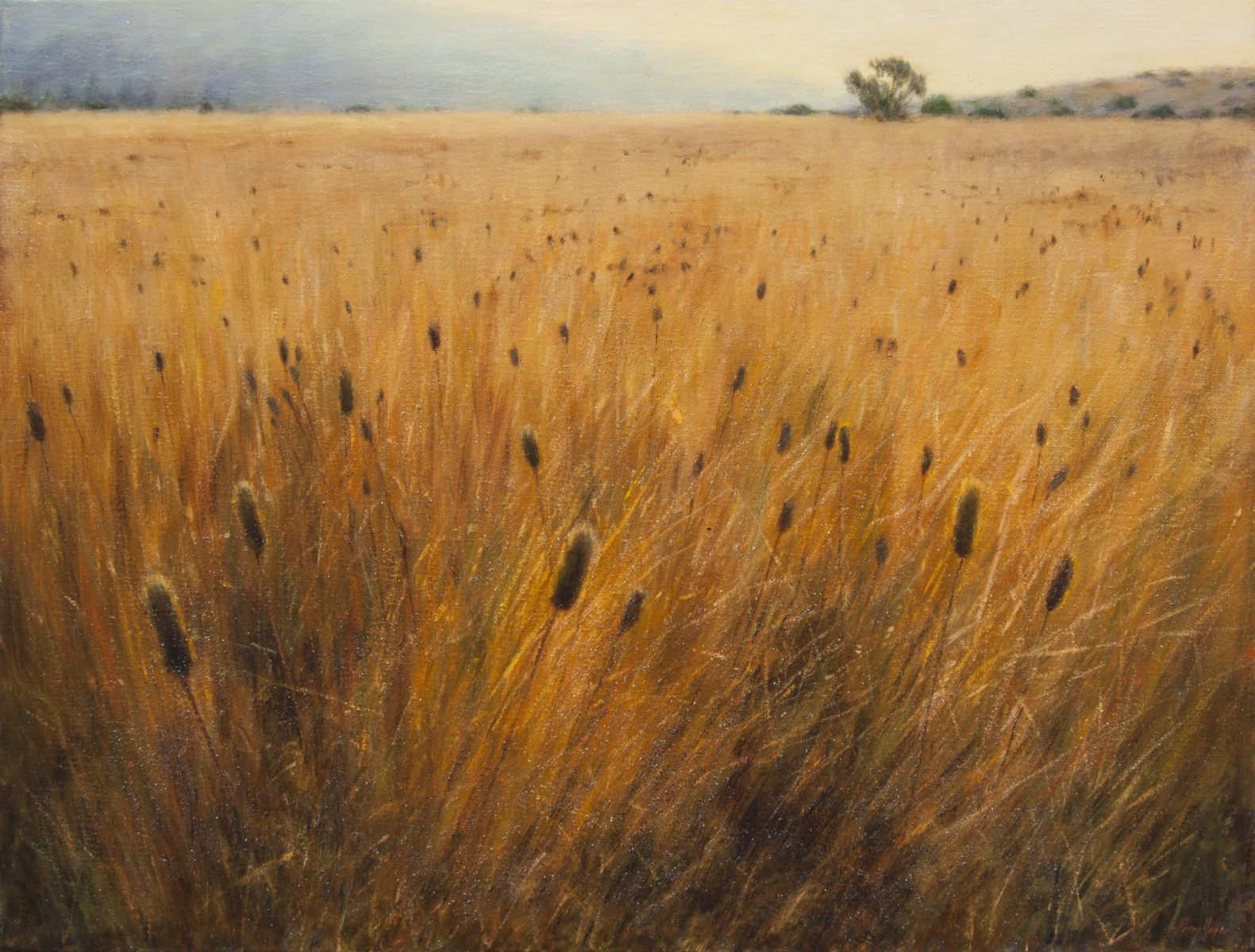 "Cattail Marsh • 30"" x 40"" • Oil"