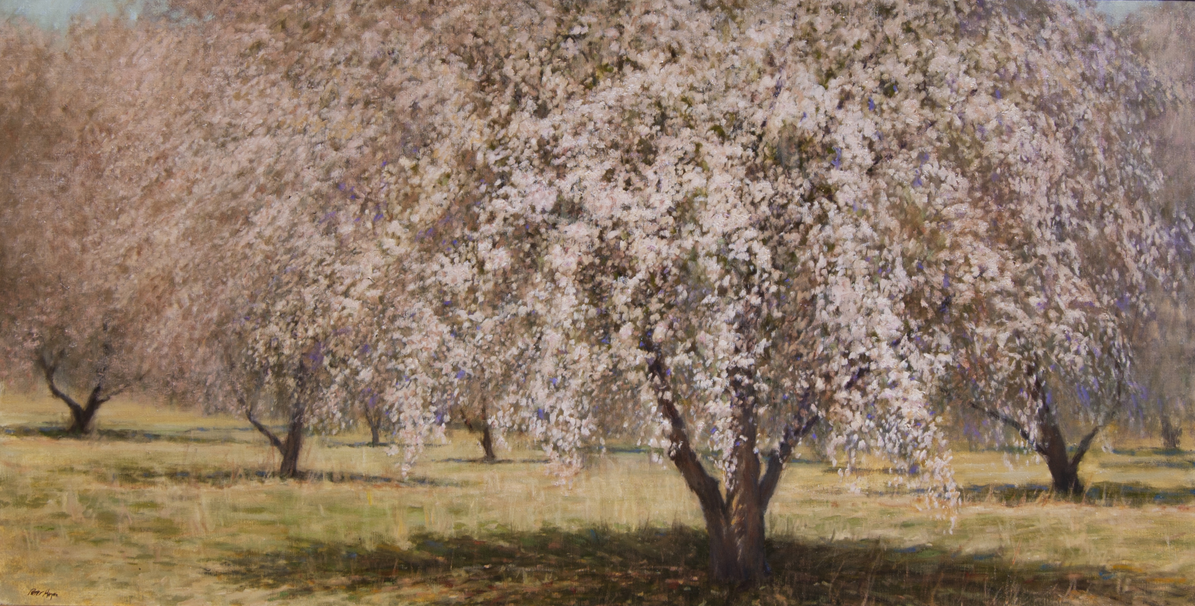 "Waves of Blossoms Flow • 30"" x 60"" • Oil"