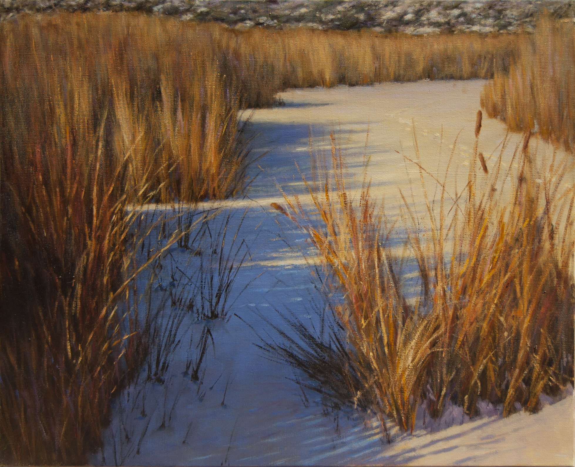 "Blue Shadows in the Marsh • 30"" x 36"" • Oil"