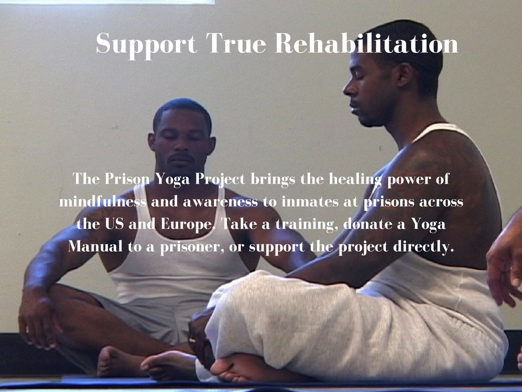 Support-True-Rehabilitation.jpg