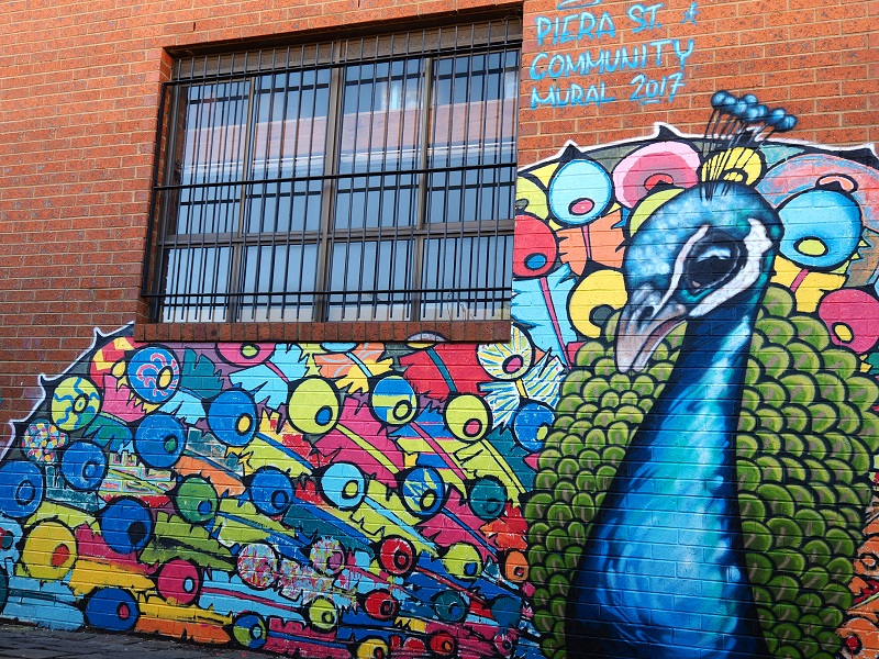 peacock full small.jpg