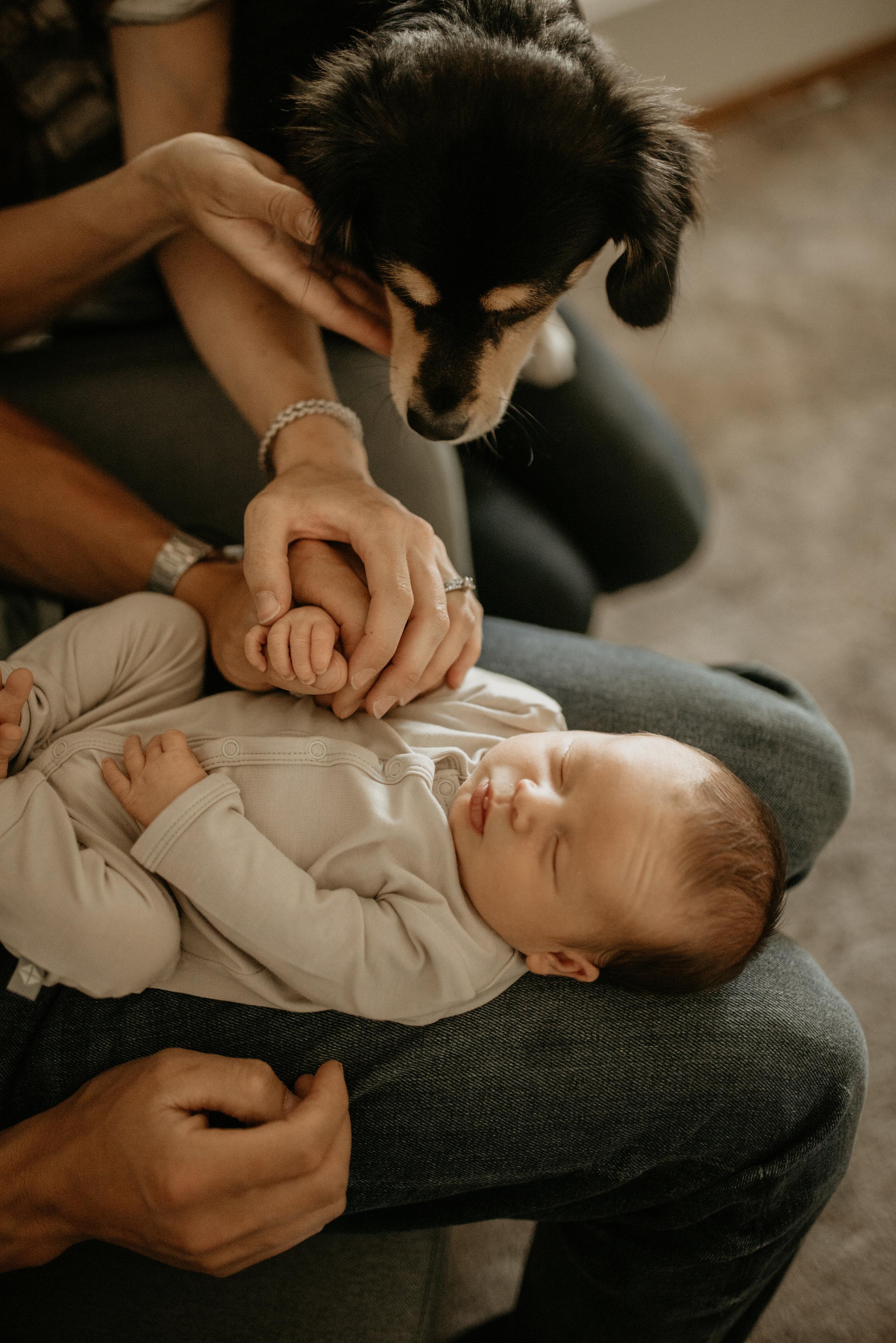 bodnar newborn-32.jpg