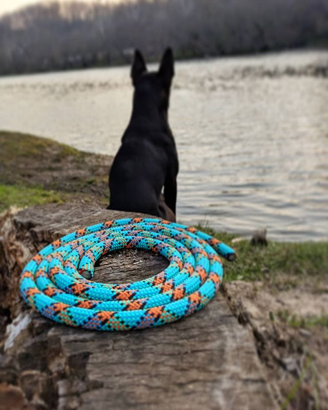 Hey friends! Here's one of our new spring colors. (Picture just shows rope color,  not full leash) These are now available! . 2 ft | $25 4 ft | $30 6 ft | $35 . While our website is under construction, you can DM us on here, or just shoot us an email at hawkbilldogco@gmail.com . . #handmade #dogoftheday  #dogsofig #petsupplies #puppy #rockclimbing #getoutside #neverhikealone #mansbestfriend #hike365