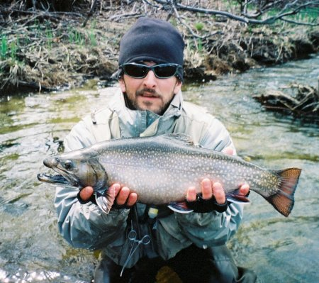 Join us for an unforgettable day of fishing... - Our region is rich with freshwater game. You can drift a caddis fly down a deep run or delicately drop a dry fly for rising trout. The area is truly blue ribbon.We specialize in both river and stream fishing. We also offer float tube flyfishing on area ponds. Come join us and let us plan a flyfishing trip customized to your needs. Memories that last a lifetime are included.