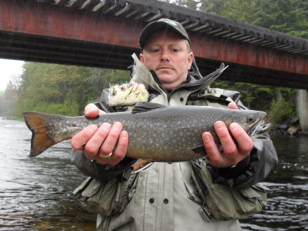 rod big trout.JPG