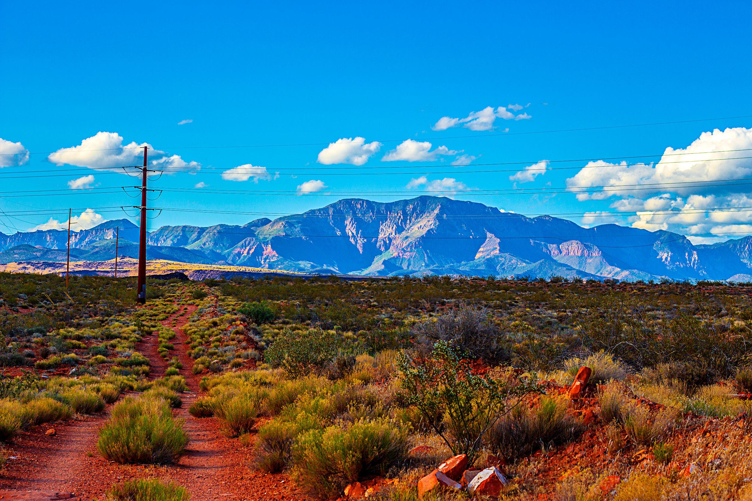 Red-Cliffs-Desert-Reserve.jpg