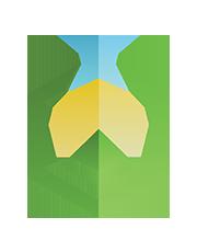 Logo-API.png