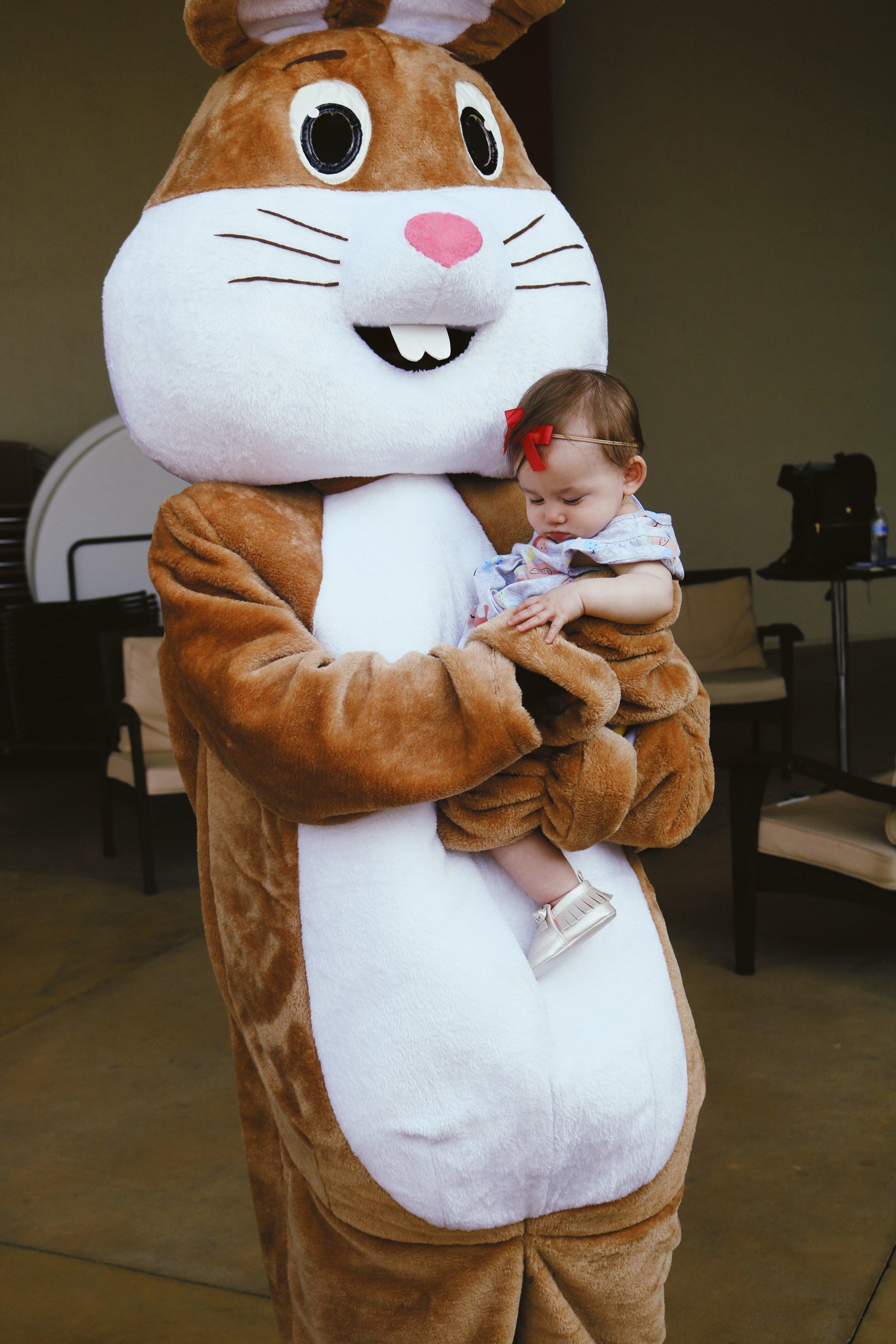 addie bunny .jpg