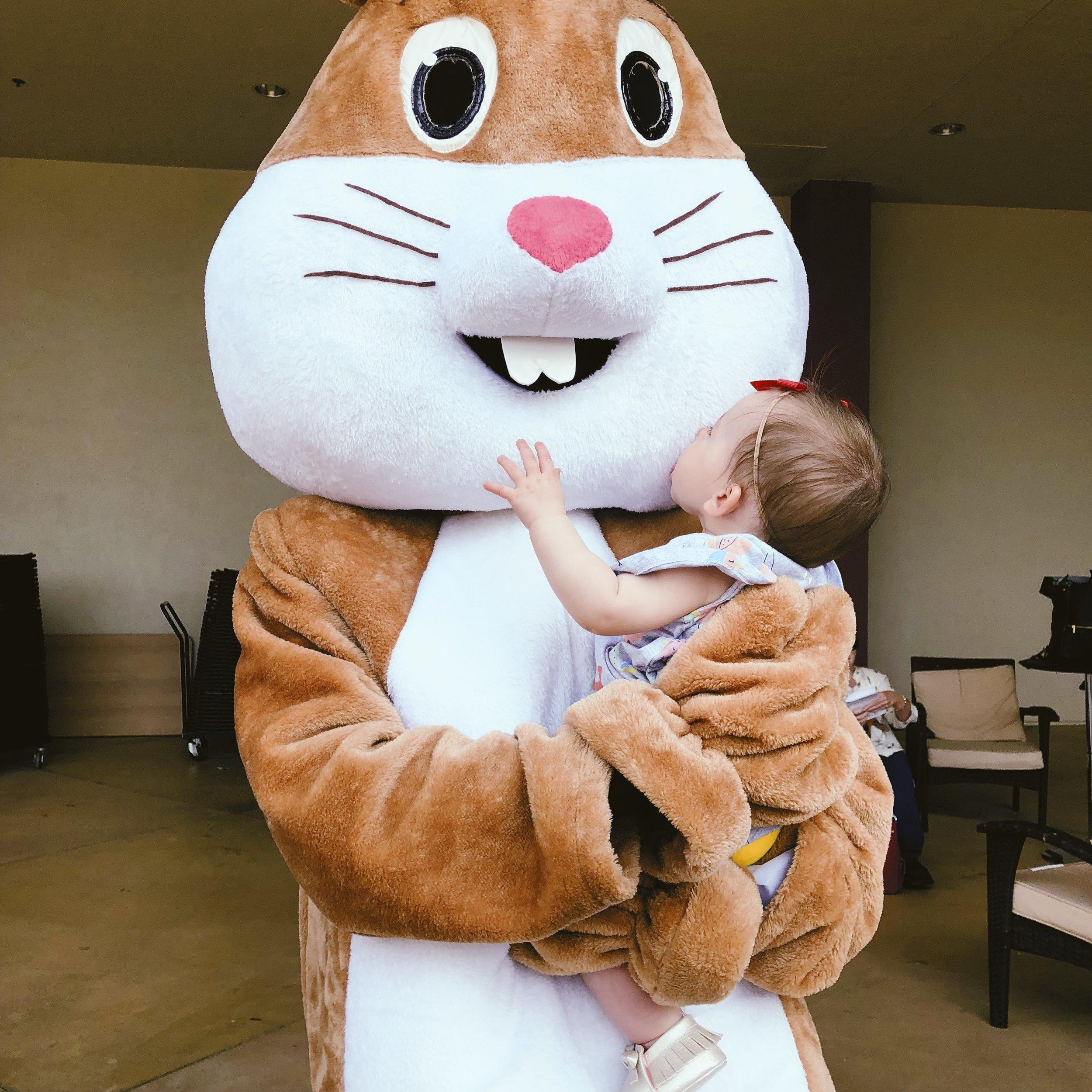 bunny kiss.jpg