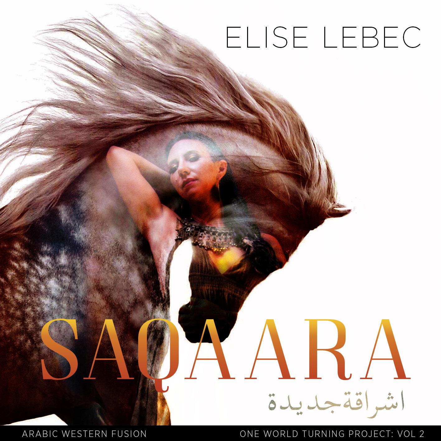 saqaara cover_rev 3.jpg