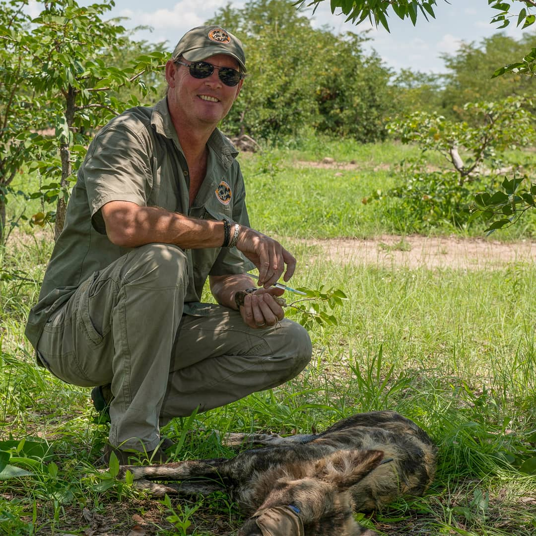 Peter Blinston, Executive Director, 20 years leading a team with a sole purpose of saving painted dogs.