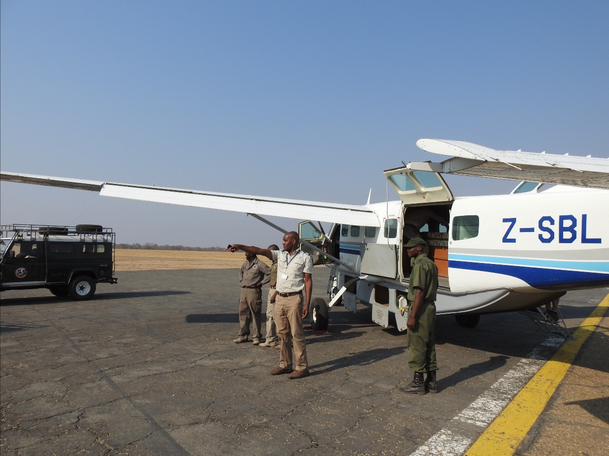 Wilderness Safaris' plane ready to take the painted dogs to Mana Pools