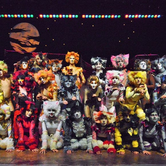 Cats_Jemima6.jpg