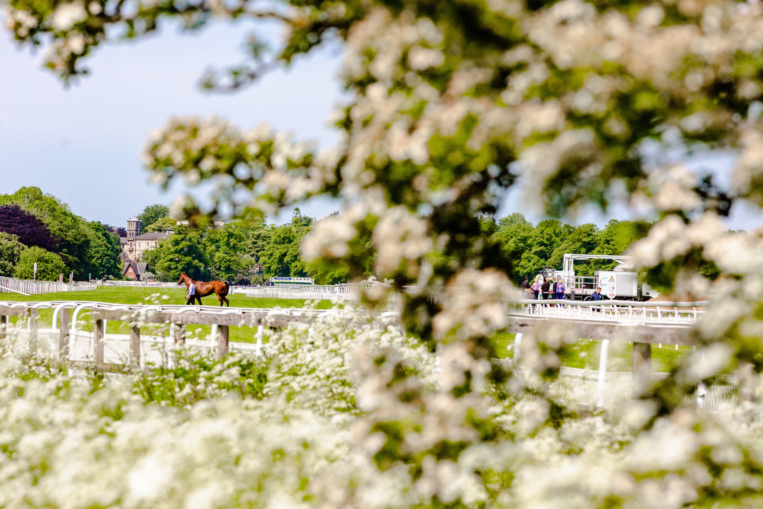 York Races - Chris Kendall Photography-9079.jpg