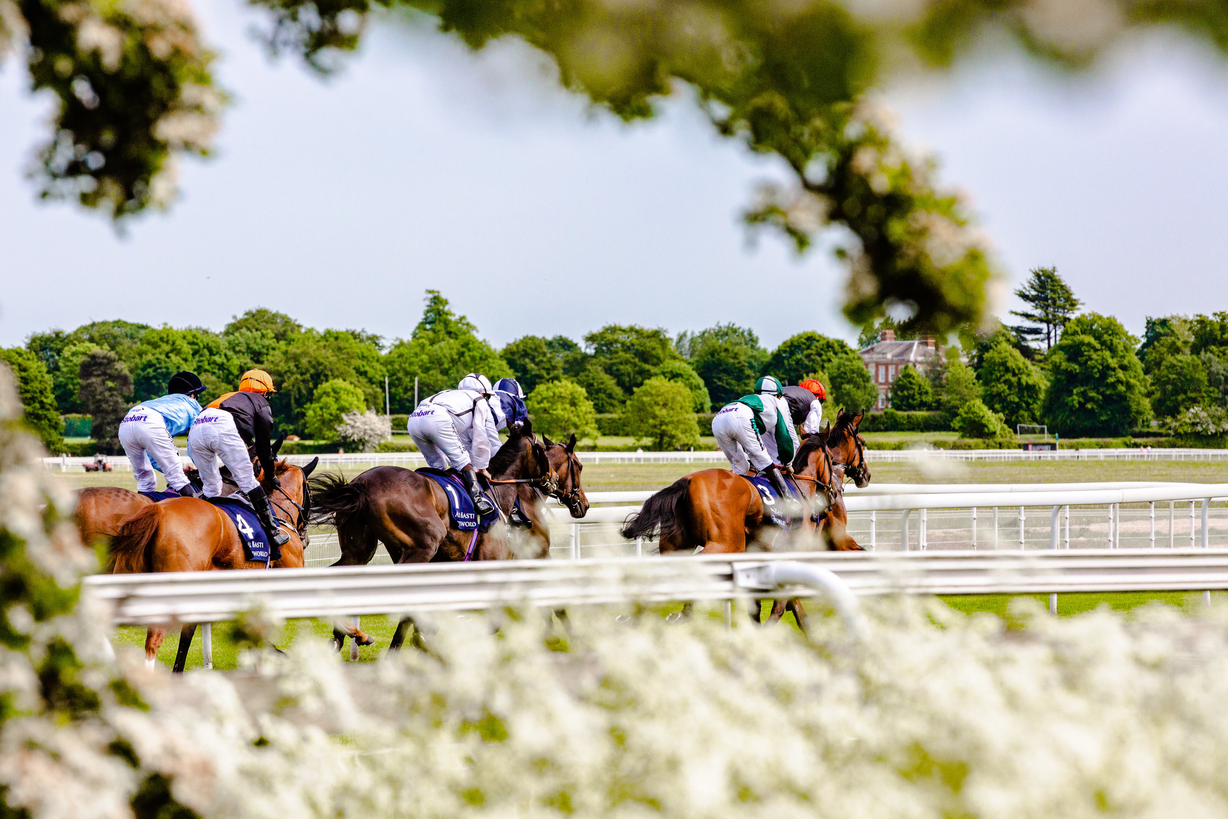 York Races - Chris Kendall Photography-9126.jpg