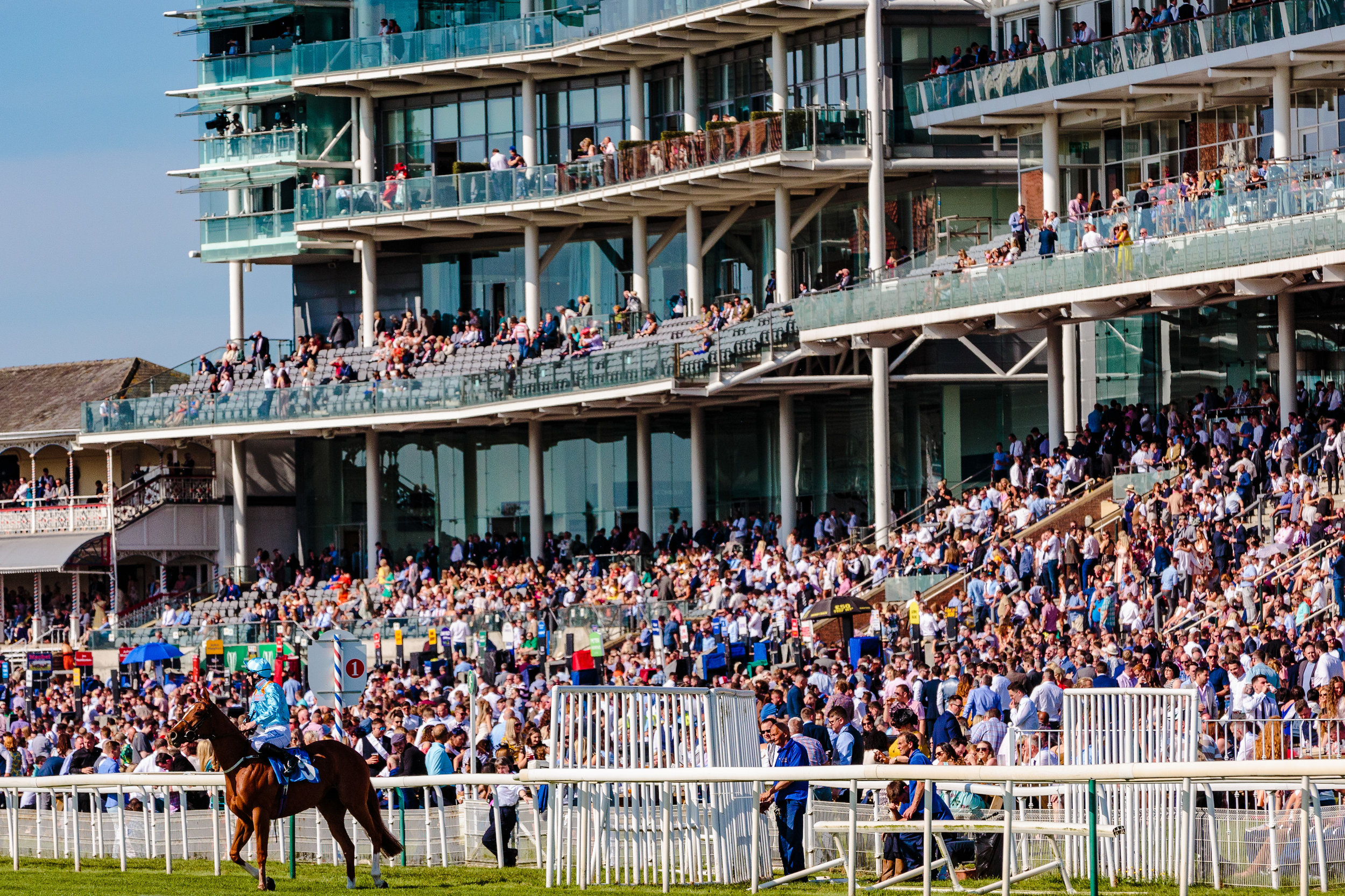 York Races - Chris Kendall Photography-9267.jpg