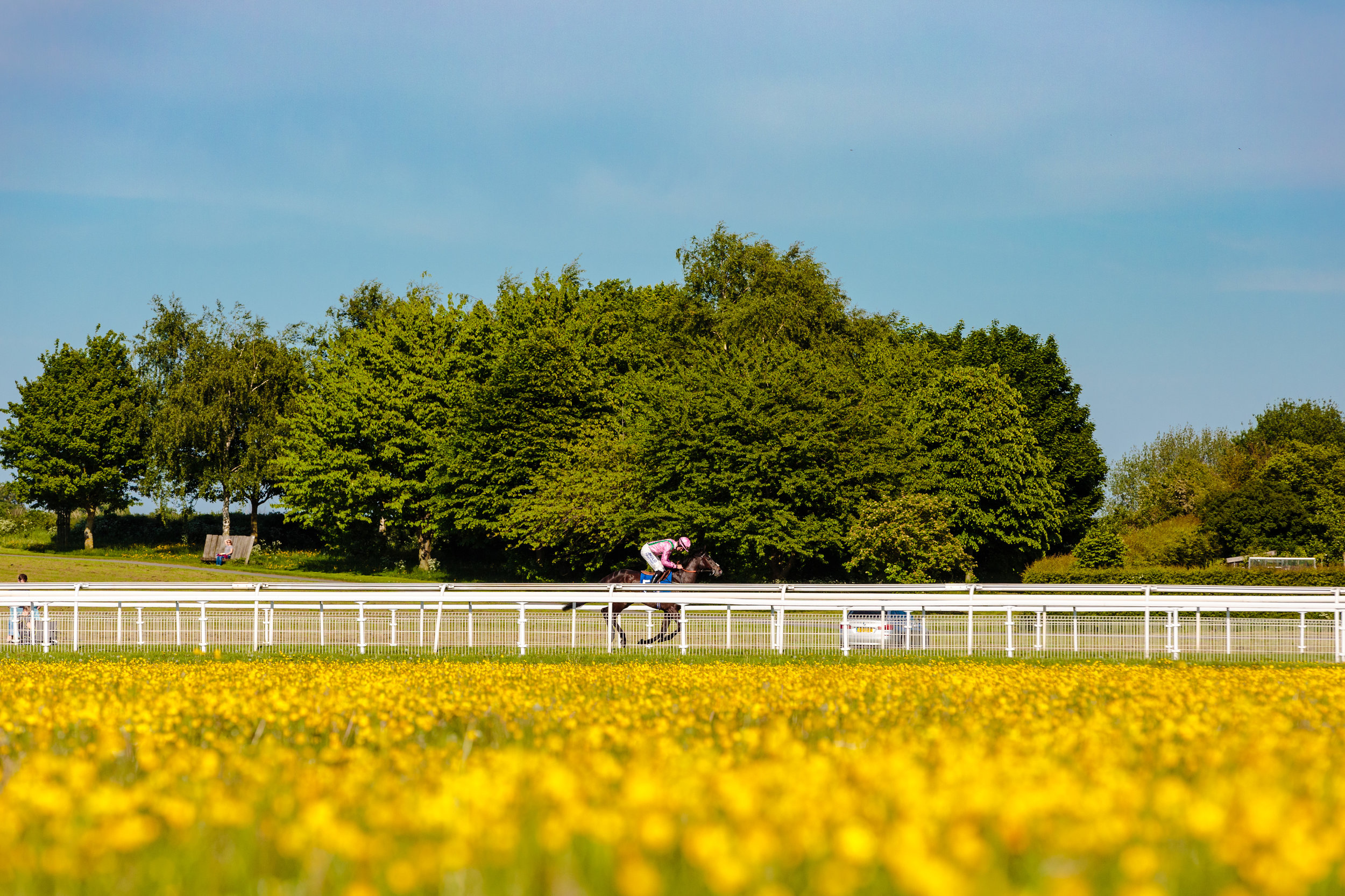 York Races - Chris Kendall Photography-9342.jpg