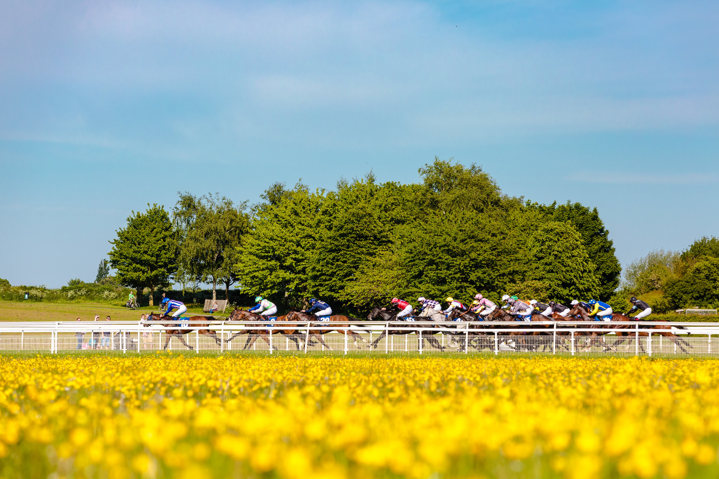 York Races - Chris Kendall Photography-9383.jpg
