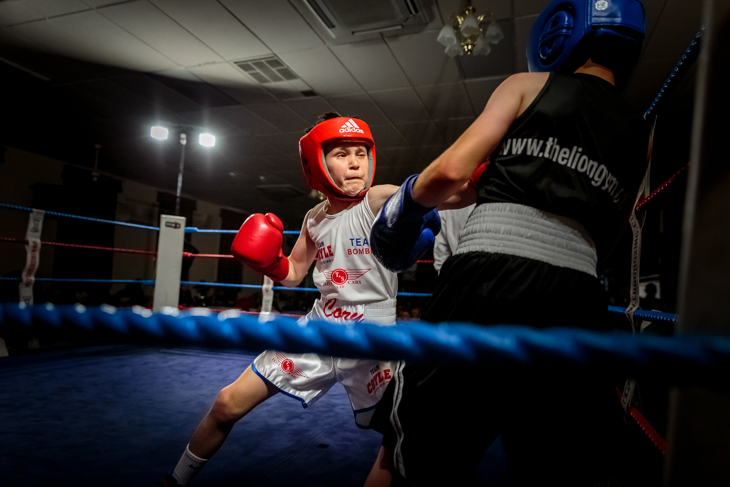 Young Boxer, from Tommy Coyle's Academy