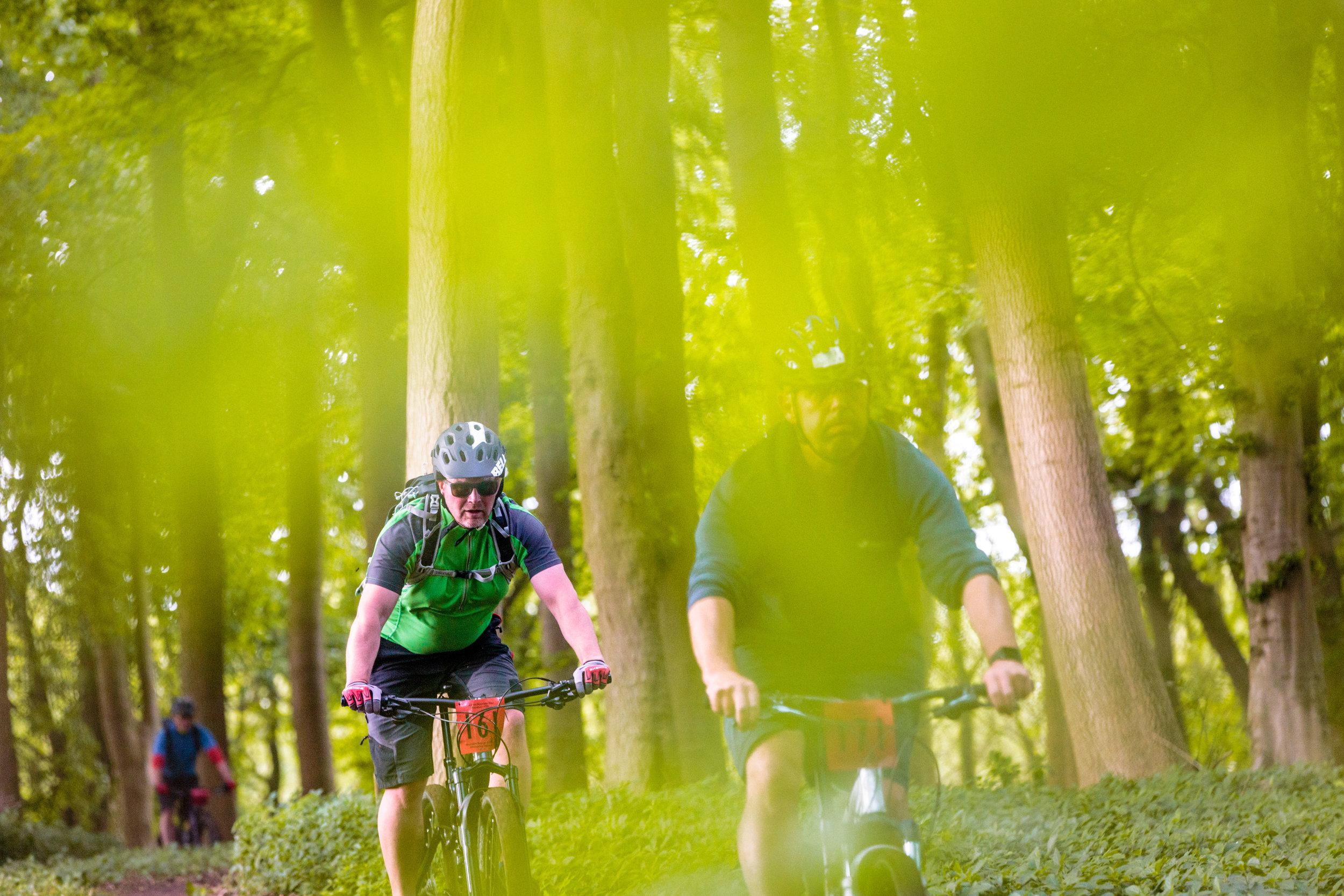 Mountain Biker Through the Leaves