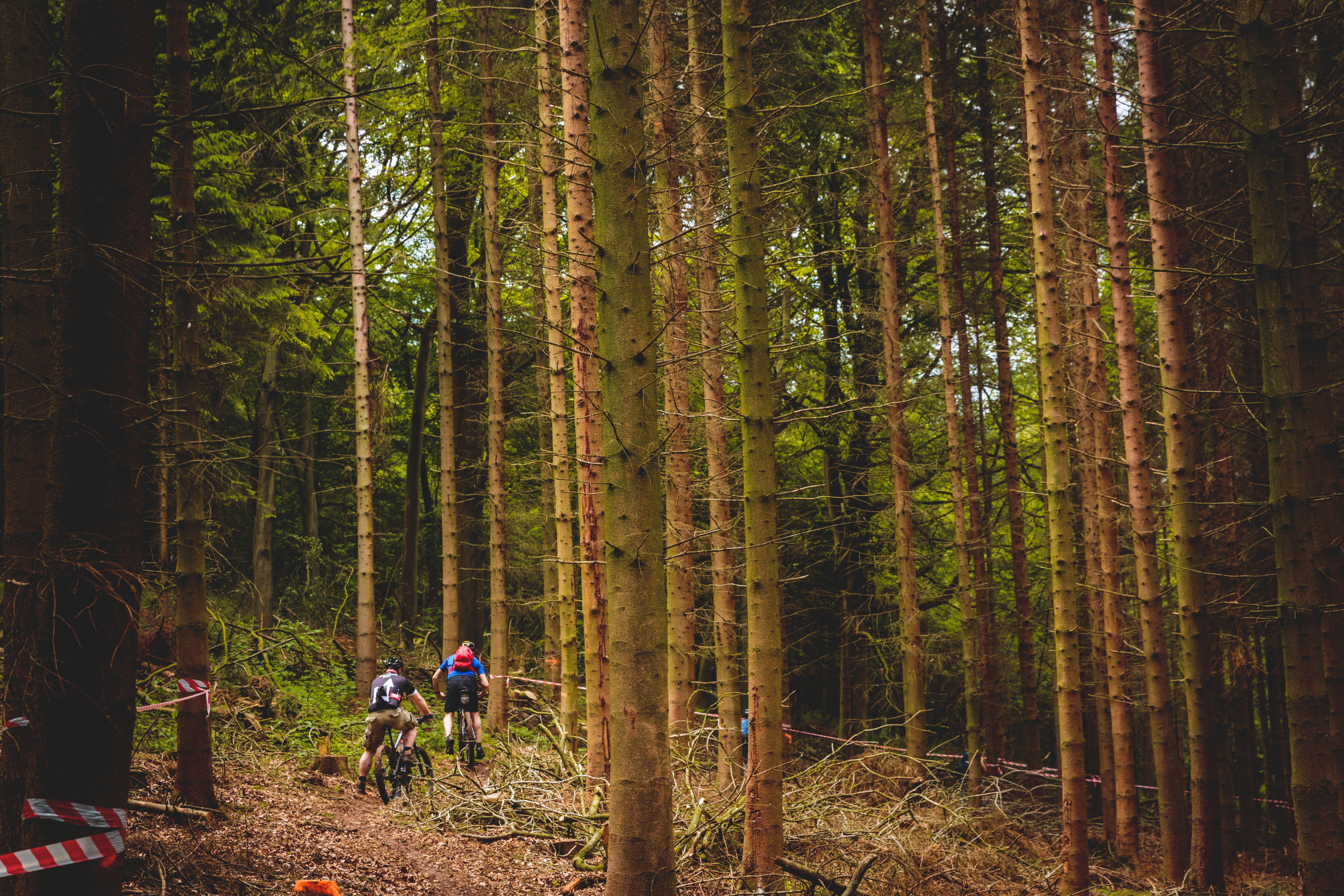 Mountain Bikers Lost in the Woods