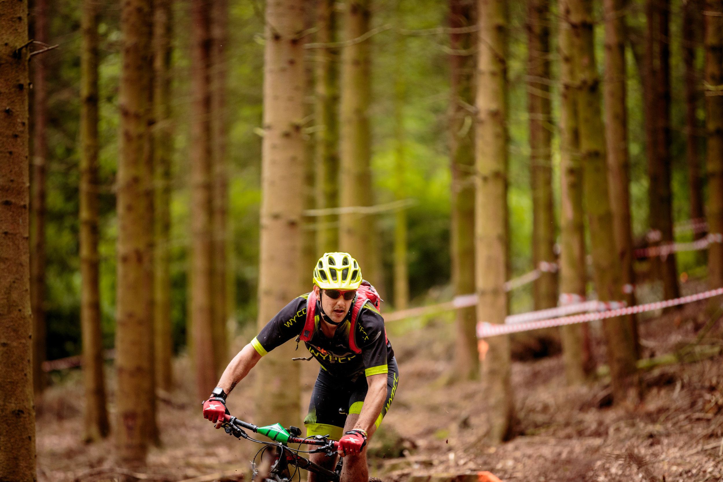 Small Mountain Biker.  Big Woods.